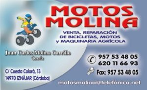 Motos Molina 1