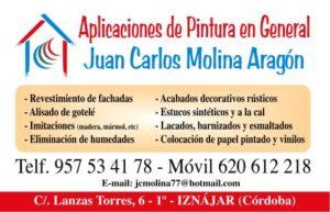 Molina Pintores 1