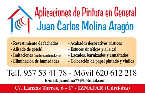 Molina Pintores