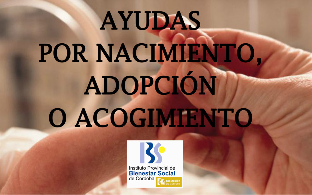 Ayudas por nacimiento, adopción o acogimiento preadoptivo 1
