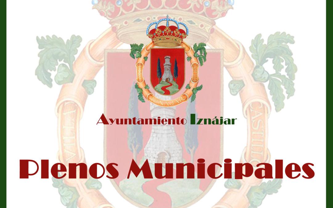 Plenos Municipales en Internet 1