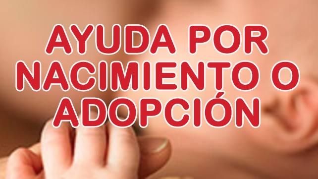 Programa de Ayudas por Nacimiento, Adopción o similar 2018 1