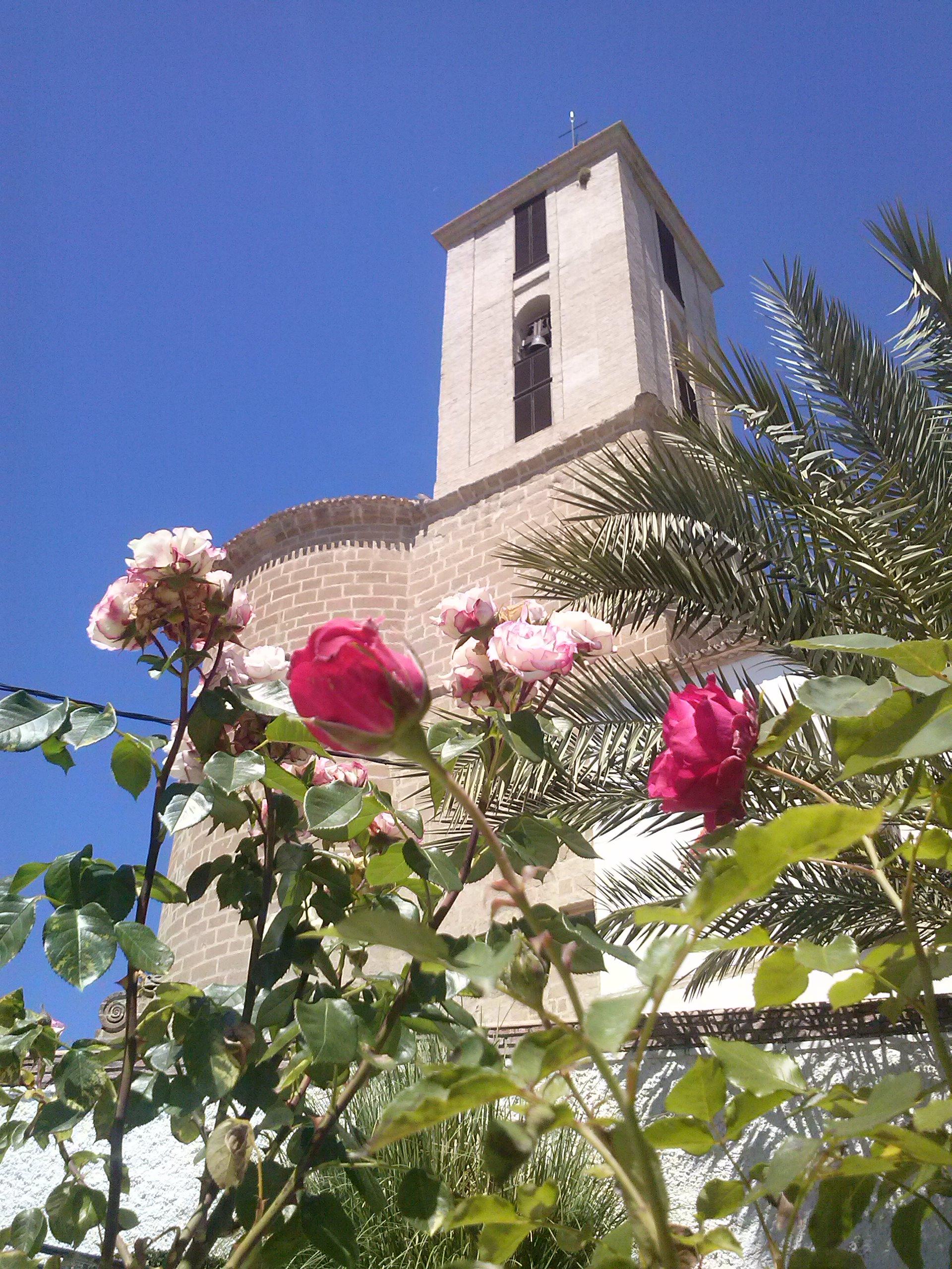 Imágenes Parroquia de Santiago Apóstol 4