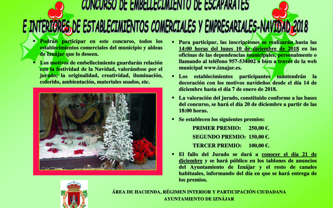 Concurso de embellecimiento de escaparates e interiores de establecimientos comerciales en Navidad 1