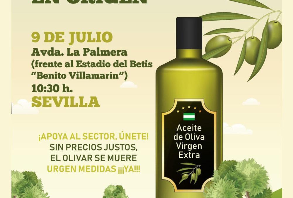 Protesta por los bajos precios del aceite de oliva en origen 1